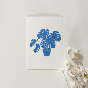 Carte postale – Monstera