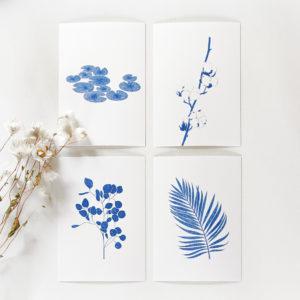 Lot de 4 cartes postales – Plantes
